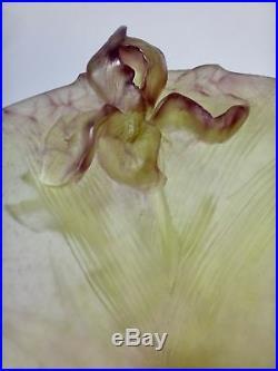 DAUM France Grande coupe en pâte de verre à décor d'iris réf 01633