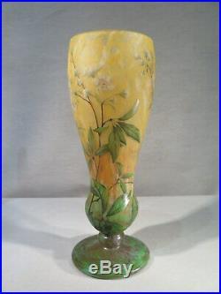 Daum Nancy Ancien Superbe Vase Pate De Verre Degage Acide Fleurs Jasmin 1900