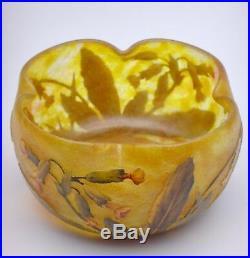 Daum Nancy Coupe polylobée à décor de fleurs de coucou 1906