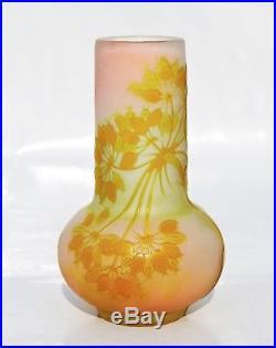 EMILE GALLÉ Beau Vase décor Ombelles Pâte de Verre Gravé ART NOUVEAU Nancy
