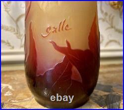 Émile GALLE Vase Piriforme allongé aux Iris