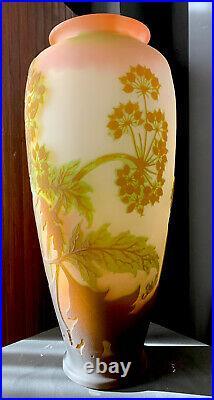 Emile Gallé Enorme vase art nouveau décor d'ombelles-daum-argy-lalique-schneider