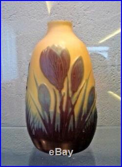 Emile Gallé-petit vase à décor de crocus-opalescent-daum, muller, schneider