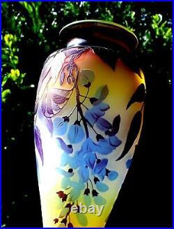 Exceptionnel monumental vase Gallé aux glycines era Daum 1900