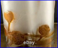 Gallé vase à décor de plantes aquatique nénuphar daum, muller, schneider