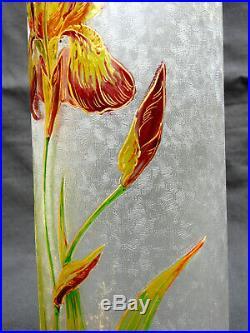 Joli et rare vase BACCARAT 1900, gravé à l'acide iris, era daum galle