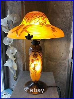 Très belle lampe Champignon Le Verre Français Eucalyptus