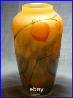 Vase DAUM Aux Physalis 1910-1914 verrerie pâte de verre
