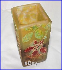 Vase Daum En Verre Degage A L'acide Decors Cynorrodhons