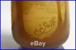 Vase GALLÉ Art nouveau verrerie (39959)