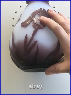 Vase La Rochère pâte de verre LIBELLULES IRIS lacide Cf Gallé Daum No 59